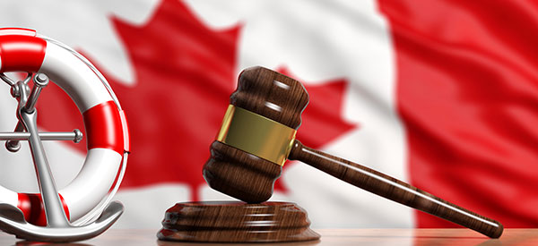 Make your dream of becoming a Canadian citizen come true by applying with the expertise of an immigration lawyer.