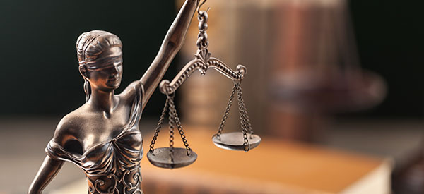 Montreal lawyers and firms have different specializations in law.