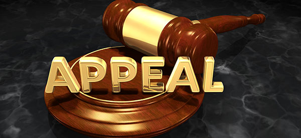 Know when you can appeal a court decision by consulting your lawyer.